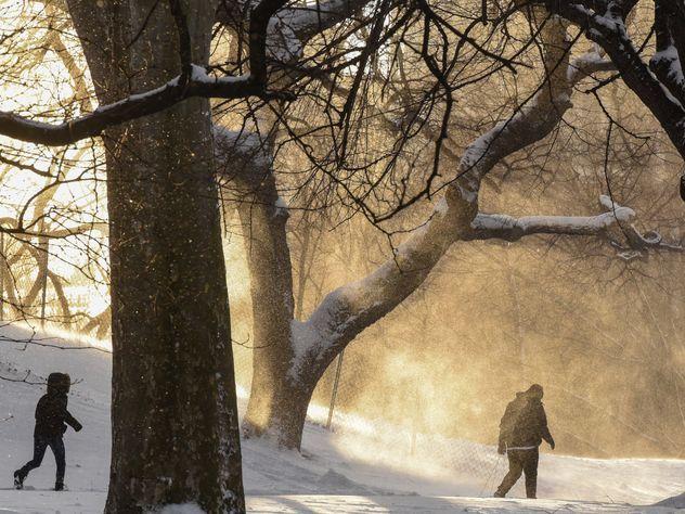 Вгрядущие выходные в столице  иПодмосковье предполагается  оттепель