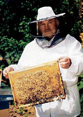 Юрий Михайлович уважает пчёл за инстинкт непрерывно пополнять закрома своей семьи