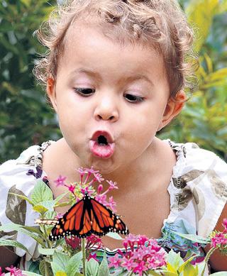 При гадании на бабочках ни одно насекомое не пострадает!