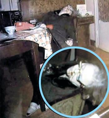 Любимицу зрителей Зою ФЁДОРОВУ убили выстрелом в затылок в её трёхкомнатной квартире