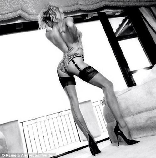 Памела АНДЕРСОН выложила в Твиттер сексапильный снимок из новой рекламной кампании её линии нижнего белья