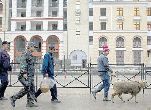 Приезжие чувствуют себя в россии как дома