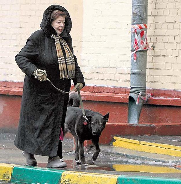 Раньше Татьяна Геннадьевна часто выгуливала Фросю. Фото Руслана ВОРОНОГО