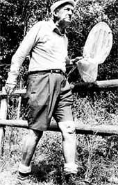 ВЛАДИМИР ВЛАДИМИРОВИЧ: до глубокой старости оставался ребенком и больше всего на свете любил ловить бабочек