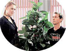 СЦЕНА ИЗ СЕРИАЛА &#034НЕ РОДИСЬ КРАСИВОЙ&#034: странная любовь Тропинкиной и Короткова