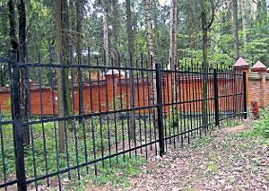 НОВАЯ ТЕРРИТОРИЯ: Церетели огородил забором примыкающий к его участку лес - под предлогом устроительства художественных выставок