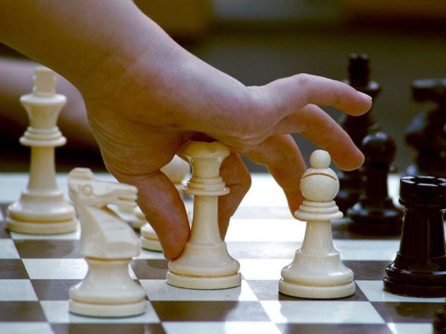 Дети вшколах должны заниматься шахматами— Министр образованияРФ