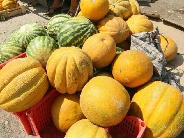 Советы, как правильно выбрать арбузы и дыни от Роспотребнадзора