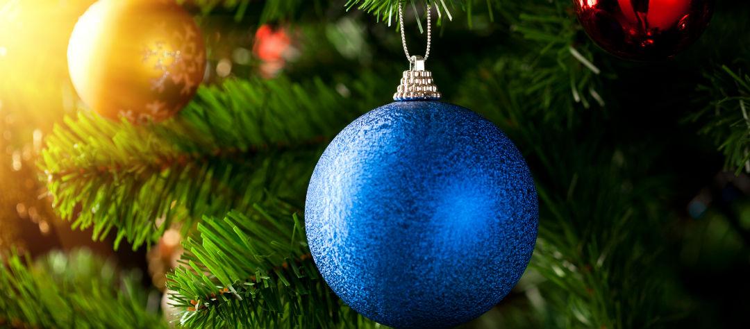 Живая новогодняя елка.