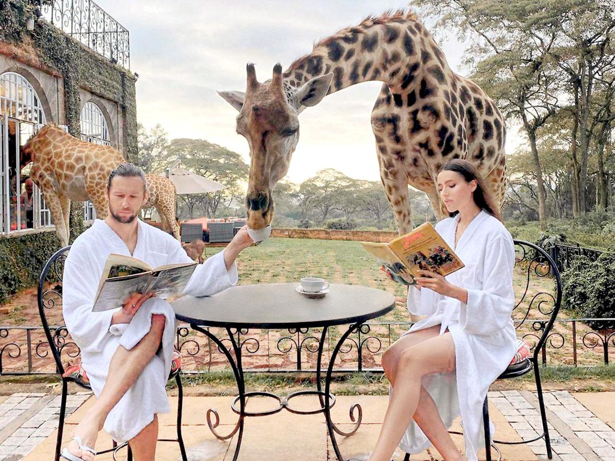Хавбек «Локо» перестал бояться жирафов
